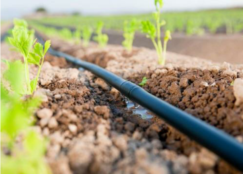 Drip irrigation system – an innovative watering method